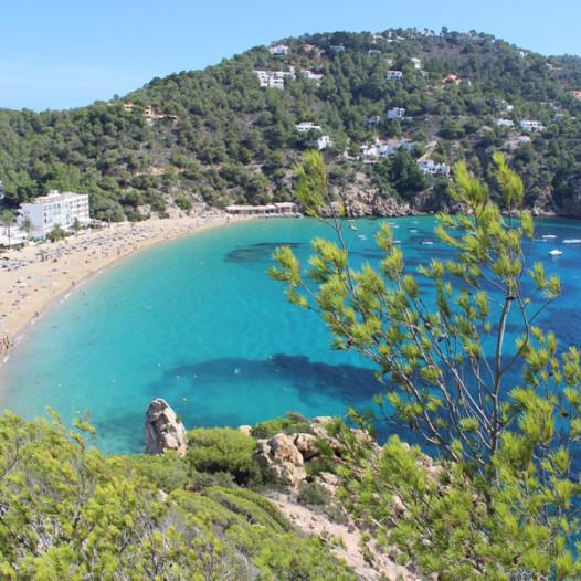 Excursión Cala Sant Vicent